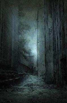 False Moonlight by Yaroslav Gerzhedovich