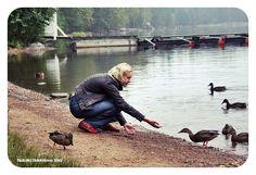 кормит уток фото: 32 тыс изображений найдено в Яндекс.Картинках