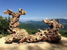 Chainsaw Suclpture work of Hikaru Kodama https://www.facebook.com/hikaru.kodama