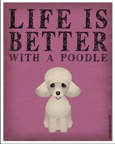 Life is Better with a Poodle @Cassandra Dowman Greeley @Camille Blais Greeley…