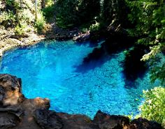 Oregon Tamolitch Blue Pool Via Mckenzie River Trail Is A 3 7 Mile Moderately Trafficked Out And