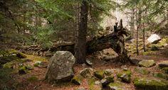 Pallars Sobirà y Aigüestortes #Aiguestortes