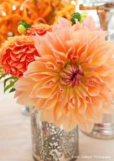 love with dahlia, a favorite in late summer.and I love a summer wedding.of coarse i was married on fourth of July weekend. Orange Wedding Flowers, Orange Flowers, Wedding Colors, Beautiful Flowers, Coral Orange, Summer Centerpieces, Orchid Centerpieces, Dahlia Centerpiece, Centerpiece Ideas