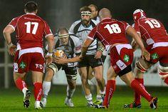 Zebre Rugby Vs Scarlets 25/10/13 - Photographs courtesy of Zebre Rugby - Foto VASINI (© 2013)