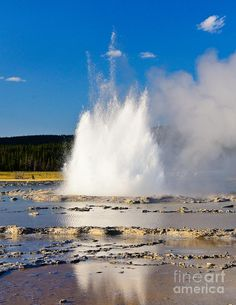✮ Great Fountain Geyser in Yellowstone National Park