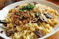 truffle mac and cheese...  $6.95 at Noodle & Company