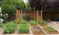 potager garden plans - Google Search