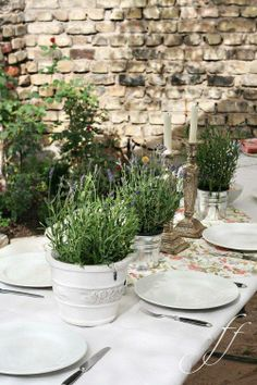 like the french provence herb feel here possibly for sun brunch