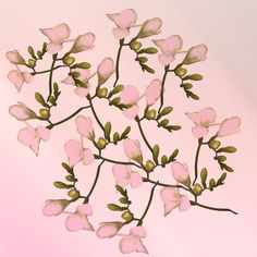 Painterly Pretty Pink Floral Art Print