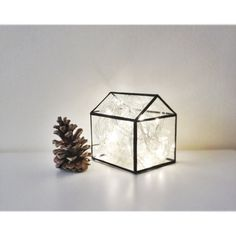 The Glass House Terrarium by hereandnowshop on Etsy, $50.00