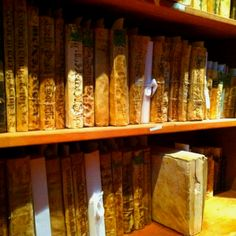 XVI century books. Armando Olivares Library. University of Guanajuato