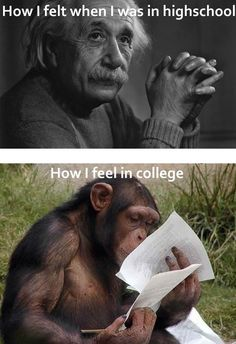 True story...well in the premed program at least , and the architectural history course I had to take