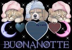 Risultati immagini per buonanotte co i cani