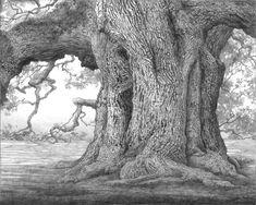 Artwork: monochromatic designs, pencil and ink drawings 3d Tree, Tree Art, Tree Drawings Pencil, Art Drawings, Landscape Tattoo, Landscape Art, Still Life Drawing, Art Folder, Nature Tree