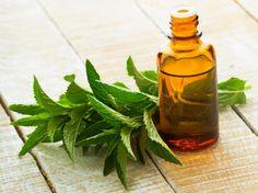 Massageöl selber machen - Rezepte und Anleitungen für entspannendes Wellness Massageöl