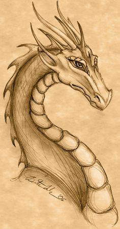 25 Ideas Tattoo Dragon Fire Mythical Creatures For 2019 - Art World Cute Drawings, Animal Drawings, Drawing Sketches, Detailed Drawings, Sketching, Fire Dragon, Dragon Art, Fantasy Dragon, Fantasy Art