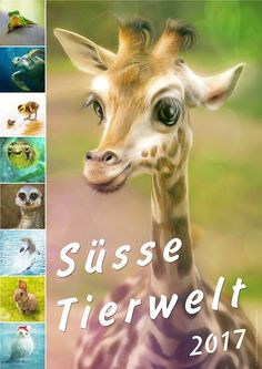 Tier Kalender 2017 ;-) Giraffe, Animals, Photos, Calendar 2017, World, Felt Giraffe, Animaux, Animal, Animales