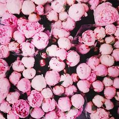 #Pow What a gorgeous #colour inspiration we just can't get enough of #flowers #Cozies #comingsoon #justforyou #everynightluxury #ladiesfashion #fashion #instagram #cosy #chic