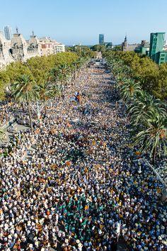 Manifestació de l'11 de setembre de 2016 a Barcelona, Catalonia  Foto: Galdric Peñarroja