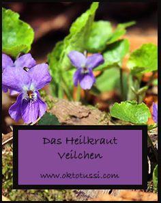 Kraut, Herb Garden, Bronchitis, Herbs, Health, Plants, Wellness, Edible Flowers, Indoor House Plants
