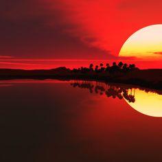 2048x2048 Wallpaper sol, declínio, palmeiras, contornos, à noite, reflexão