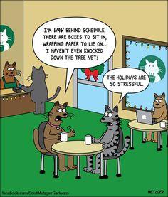 Today on The Bent Pinky - Comics by Scott Metzger Cat Jokes, Funny Cat Memes, Funny Cartoons, Cats Humor, Cartoon Humor, Pet Memes, Funny Gifs, Memes Humor, I Love Cats
