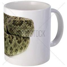 Green Mojave Rattlesnake Mug on CafePress.com
