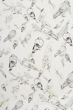 I'm not usually one for wallpaper, but if you put a bird (or a few) on it...
