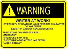 Writing- So true! Do not interrupt a work in progress.