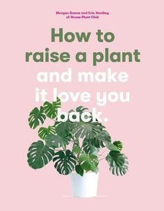 Ahead, Erin and Morgan share their tips and tricks for raising succulents, cacti and monstera deliciosa – and making them love you back. Gardening Books, Gardening Tips, Just For You, Love You, Branding, Your Back, Little Books, Plant Care, Organic Gardening