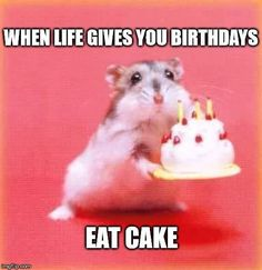 Top 100 ++ Original and funny Happy Birthday Memes, , Top original and funny happy - Birthday Images For Her, Happy Birthday Quotes For Him, Happy Belated Birthday, It's Your Birthday, Birthday Memes, Birthday Greetings, Birthday Cards, Heaven Birthday, Happy Birthday Sister Funny