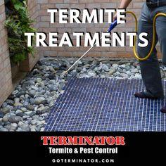 Termite Season is Here - Terminator Termite & Pest Control Termite Pest Control, Rainy Days, Learning, Blog, House, Blogging, Haus