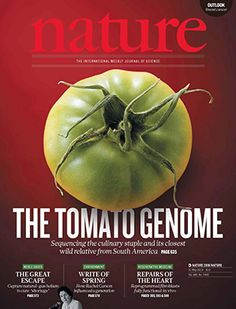 A sign of cancer immortality in mitochondria: With an anaerobic metabolism, oxidative damage to mitochondrial DNA decreases. The tumor mitochondria then function better than normal mitochondria, allowing the diseased cells to live indefinitely. Genome Sequencing, General Biology, Mitochondrial Dna, Healthy Fruits And Vegetables, Science Magazine, Regenerative Medicine, Plant Science, Cancer Sign, Journal Covers