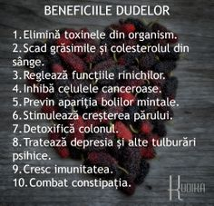 Beneficiile UIMITOARE ale DUDELOR: