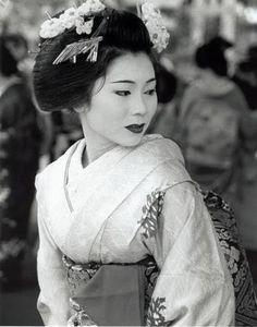 formal elegance in kyoto Japanese Geisha, Japanese Beauty, Japanese Kimono, Asian Beauty, Geisha Art, Geisha Makeup, Memoirs Of A Geisha, Traditional Japanese Art, China Girl