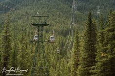 The Banff Gondola offers a year round way for visitors to see breathtaking panoramic views of the surrounding mountains, the Bow Valley and the town of Banff. Lake Louise Ski, Gondola Lift, Sulphur Mountain, Jasper National Park, Canadian Rockies, Banff, Rocky Mountains, Wind Chimes, Outdoor Decor