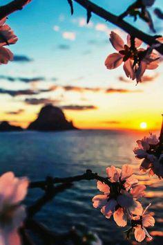 Deniz kadar derin... Çiçek kadar güzel kokulu... Güneş kadar parlak...