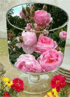 Goblet with rose Morning Rose, Good Morning Gif, Good Morning Flowers, Beautiful Love Pictures, Beautiful Gif, Beautiful Roses, Flowers Gif, Flowers Nature, Love Flowers