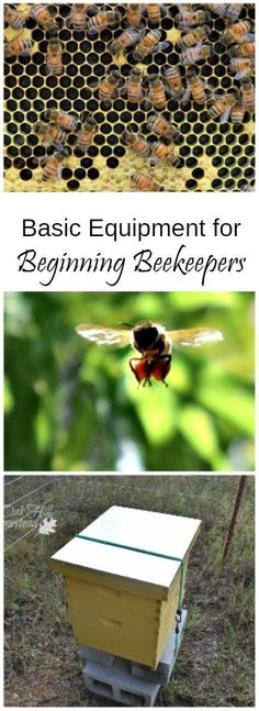 Basic Equipment for Beginning Beekeepers: how to save money when you're first starting out #beekeepingideas #beekeeperequipment