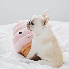 piggyandpolly