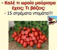 50 αστείες ελληνικές φωτογραφίες που κάνουν θραύση στην Ελλάδα αυτή την στιγμή - Toftiaxa.gr | Κατασκευές DIY Διακοσμηση Σπίτι Κήπος
