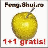 Retete de bucatarie: TORT CU MAC-PRELUARE Feng Shui, Mac, Calendar, Apple, Fruit, Apple Fruit, Life Planner, Apples, Poppy