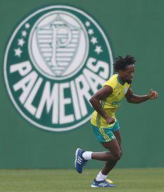 Zé Roberto prolonga contrato com o Palmeiras por mais uma temporada #globoesporte