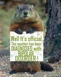 So true here!... Minnesota!!