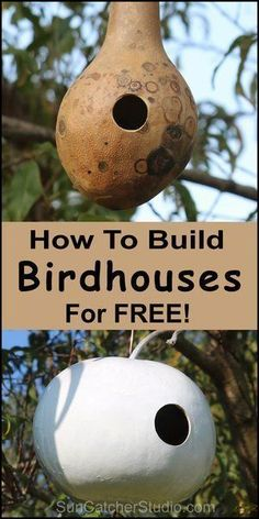 How to make a gourd birdhouse. DIY homemade bird nesting box. These are made with recycled gourds, look artistic and add a fun natural look to your backyard or garden area! Make these in a few simple steps! Get all the birdhouse plans here to make and attract birds to your lawn! Great for a DIY project for beginners! Dyi Bird House, Bird House Feeder, Bird House Plans, Bird Houses Diy, Bird Feeders, Diy Projects For Beginners, Cool Diy Projects, Projects For Kids, Gourds Birdhouse
