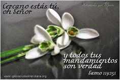 Ánimo Motivational, Truths, Messages