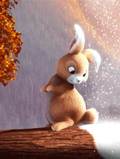 Discover the coolest 🐇🐇🐇🐇🐇#bunny #cute #see #lovely #gifs #gifsart images