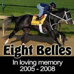 HORSE RACING VICTIM: EIGHT BELLES 2005-2008