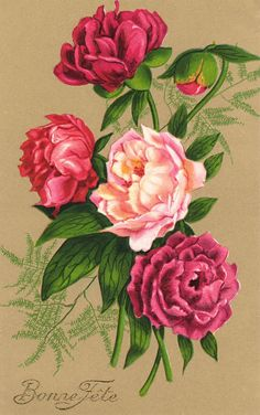 Victorian bouquets ephemera collectibles flower card flower meaning 2 Antique French cards 1900s antique postcards scrapbooking