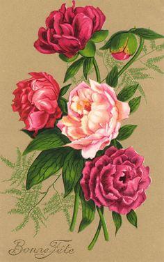Victorian Floral 2 by *Beinspyred on deviantART